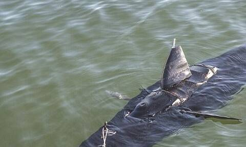CIA: Με αυτό το «όπλο» κατασκοπεύει τη θάλασσα!