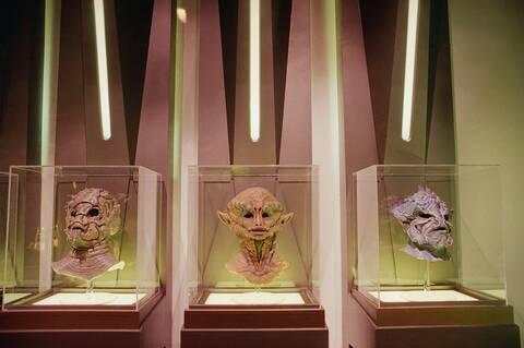 Πώς θα ήταν οι εξωγήινοι (μέσα από τα μάτια ενός ζωολόγου)
