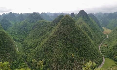 Το δάσος με τις πράσινες πυραμίδες είναι μοναδικό στον κόσμο
