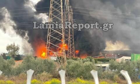 Φωτιά Σχηματάρι: Ενισχύθηκαν οι πυροσβεστικές δυνάμεις – Με εγκαύματα ο ιδιοκτήτης του εργοστασίου
