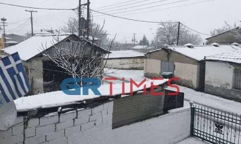 Καιρός: Έντονη χιονόπτωση στην Δυτική Μακεδονία - Ποιες περιοχές «ντύθηκαν» στα λευκά