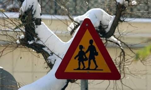 Κακοκαιρία: Κλειστές οι σχολικές μονάδες Ειδικής Αγωγής στην Φλώρινα