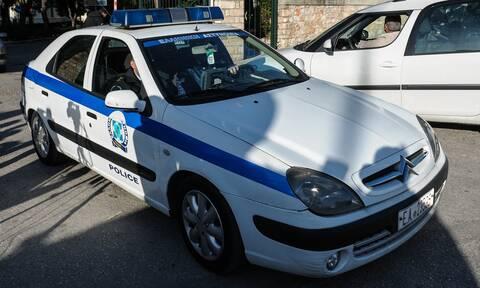 Πετρούπολη: Συνελήφθη ο δράστης της φονικής επίθεσης με τόξο σε σκύλο