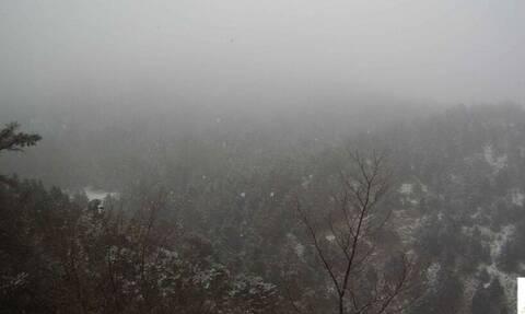 Καιρός ΤΩΡΑ: Χιονίζει στην Πάρνηθα – Δείτε LIVE εικόνα