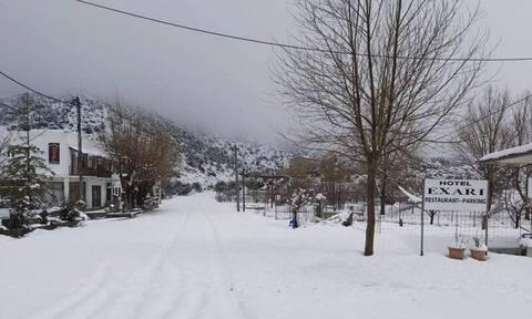 Κρήτη: Άνοιξη με τσουχτερό κρύο και χιόνια - Απίστευτες εικόνες