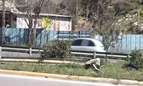 Τροχαίο στο Κερατσίνι: Συγκινεί η κοπέλα που σώθηκε - «Είμαι εδώ γιατί φορούσα ζώνη ασφαλείας»