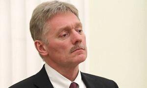Песков заявил, что Кремль не будет реагировать на жалобу жены Навального
