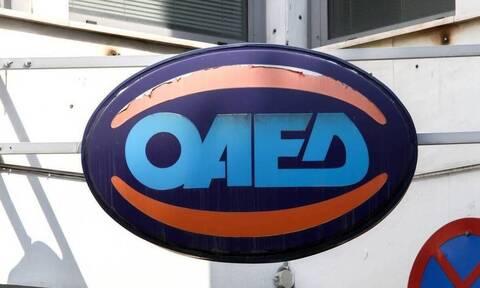 Διοικητής ΟΑΕΔ: Επιδοτούμενα προγράμματα για 42.600 θέσεις εργασίας