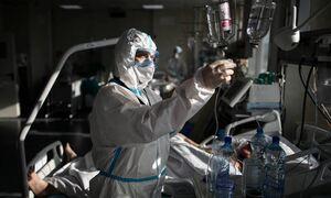 В России впервые с 9 ноября зарегистрировали менее 300 смертей из-за коронавируса за сутки
