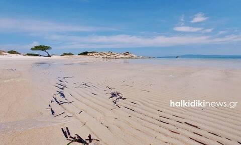 Χαλκιδική: Απίστευτες εικόνες! Εξαφανίστηκε… η θάλασσα στο Καρύδι