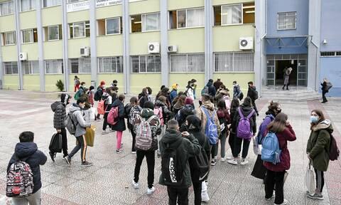 Σχολεία: Πρώτα ανοίγουν τα Λύκεια ανακοίνωσε η Ζέττα Μακρή - Τι είπε για Γυμνάσια και δημοτικά