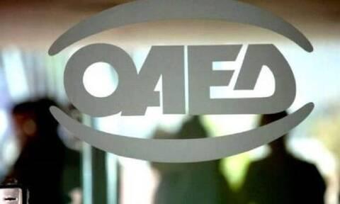 ΟΑΕΔ: Αυτά είναι τα νέα προγράμματα για 42.600 ανέργους