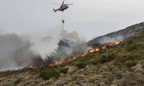 Φωτιά Άνδρος: Μαίνεται η μεγάλη πυρκαγιά - Ενισχύθηκαν οι πυροσβεστικές δυνάμεις (pics+vids)