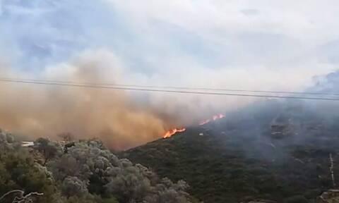 Απίστευτη αποκάλυψη για την Άνδρο: «Θα βάλω φωτιά», έλεγε πρόεδρος κοινότητας - Μαίνεται το μέτωπο