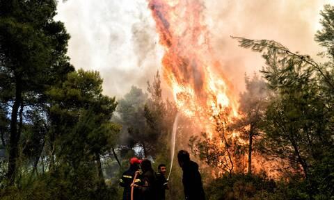Φωτιά Άνδρος: «Παρόρμηση της στιγμής» το «θα βάλω φωτιά» λέει τώρα ο κοινοτάρχης