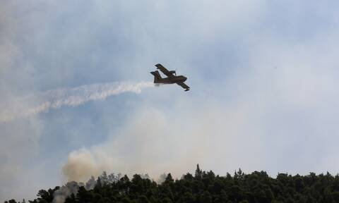Φωτιά ΤΩΡΑ: Μεγάλη πυρκαγιά στο Άγιο Όρος