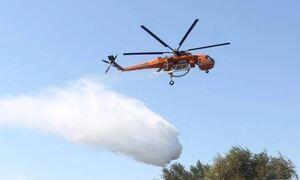 На Святой горе возле Афона бушует лесной пожар