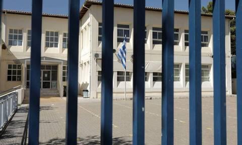Λύκεια: Επιστρέφουν οι μαθητές στις τάξεις – Πότε θα κάνουν self test και τι θα γίνει αν βγει θετικό