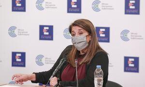 Παπαευαγγέλου: Σημαντική αποκλιμάκωση της επιδημίας έως το Πάσχα