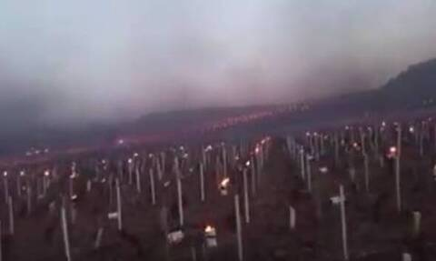 Γαλλία: Το ψύχος απειλεί καλλιέργειες και αμπελώνες- Άναψαν φωτιές για να σώσουν τη σοδειά (Vid)