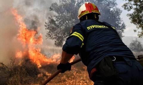 Δύο φωτιές σε εξέλιξη στην Κορινθία και στην Ηλεία