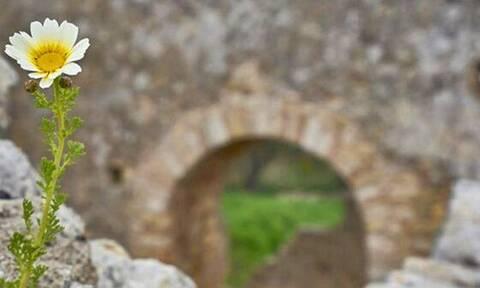 Να γιατί η Κρήτη είναι γη ευλογημένη! (pics)