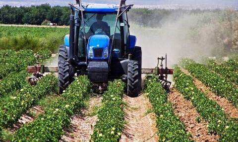 Αγρότης - Χωράφι