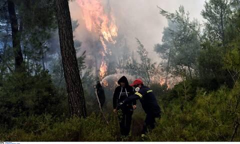 Φωτιά ΤΩΡΑ στη Σάμο - Καίγεται δασική έκταση