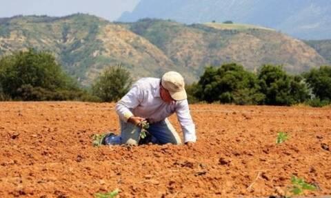 Τεράστιες καταστροφές σε  αγροτικές καλλιέργειες στους νομούς Πέλλα και Ημαθία
