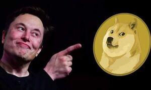 Elon Musk: Πώς «διέταξε» την εκτόξευση του Dogecoin
