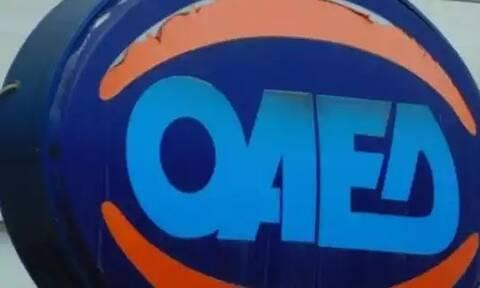 ΟΑΕΔ: Επιδοτούμενη κατάρτιση σε πέντε ειδικότητες - Ποιους αφορά