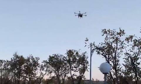 Θεσσαλονίκη: Ψέκασαν με… drone δέντρα κατά του εντόμου που τα καταστρέφει (vid)