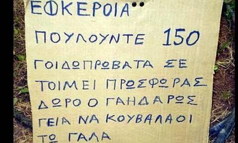 Αθάνατες ελληνικές πινακίδες: Οι πιο αστείες σε χωράφια και χωριά!