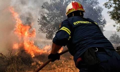 Φωτιά σε αγροτική περιοχή στην Ιεράπετρα - Ισχυροί άνεμοι πνέουν στην περιοχή