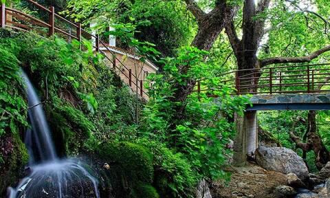 Εύβοια: Δείτε που βρίσκεται το χωριό «θαύμα»  – Ένας μικρός καταπράσινος «παράδεισος»