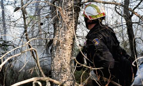 Φωτιά προκάλεσε διακοπή ρεύματος στον Πύργο και τους γύρω οικισμούς