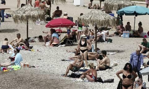 Παπαθανάσης: Πώς θα προχωρήσει το άνοιγμα της εστίασης - Τι θα γίνει με τις οργανωμένες παραλίες
