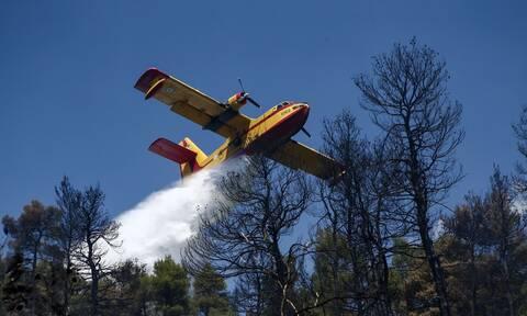Αεροσκάφος της Πυροσβεστικής επιχειρεί σε φωτιά
