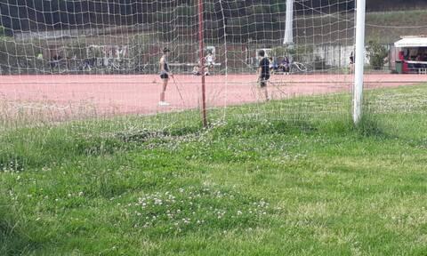 Από γήπεδο… χωράφι - Έτσι έγινε μετά από έξι μήνες αδράνειας (photos)