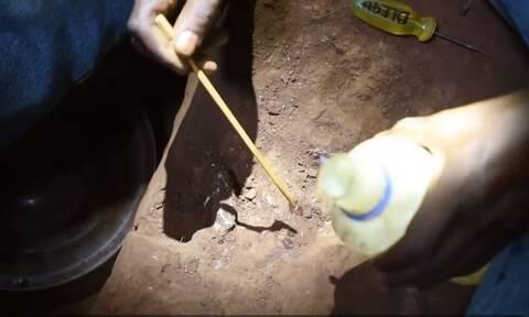 Σπουδαία αρχαιολογική ανακάλυψη στην Κένυα: Βρέθηκε τάφος με σκελετό παιδιού ηλικίας 78.000 ετών