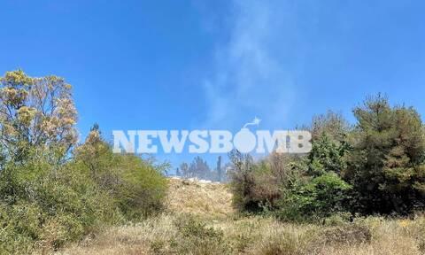 Ρεπορτάζ Newsbomb.gr: Μεγάλη φωτιά στην Αργυρούπολη (Pics&vid)
