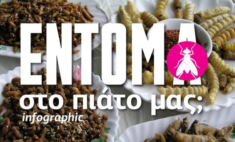 Έντομα στο πιάτο μας; Απόφαση σταθμός της Ε.Ε -  Δείτε το Infographic του Νewsbomb.gr