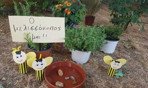 Οι αστικοί μελισσόκηποι της Αθήνας - Ρεπορτάζ του Newsbomb.gr για τη δράση «Bee&BE»
