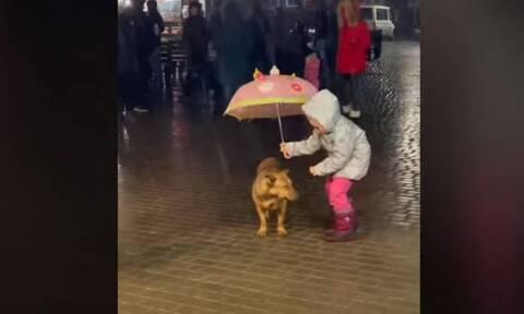 Το video που έγινε viral: Κοριτσάκι προστατεύει το σκύλο του από τη βροχή