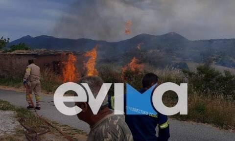 Εύβοια: Φωτιά ΤΩΡΑ στο παλιό χωριό στο Δύστο