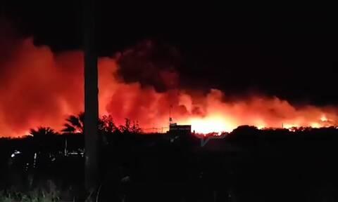 Φωτιά στο Σχίνο Κορινθίας: Ανεξέλεγκτη η πυρκαγιά - Ενισχύθηκαν οι δυνάμεις της Πυροσβεστικής