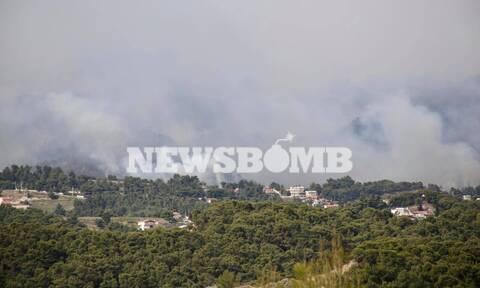 Φωτιά στην Κορινθία: Ελπίδες από τα εναέρια μέσα - «Σε ύφεση» λέει ο αρχηγός της Πυροσβεστικής