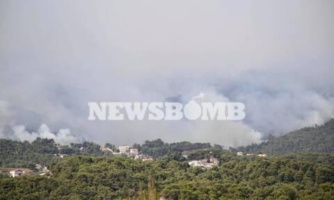 Φωτιά στην Κορινθία: Η πρόβλεψη Μαρουσάκη για τον καιρό - Πότε θα έχει 7 μποφόρ