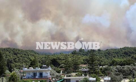 Φωτιά στην Κορινθία: Φούντωσε το μέτωπο - Ενισχύθηκαν οι άνεμοι - Μάχη να μην φτάσει στα Μέγαρα