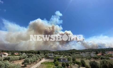 Φωτιά ΤΩΡΑ στην Κορινθία - Δήμαρχος Μεγαρέων στο Newsbomb.gr: «Δραματική η κατάσταση»